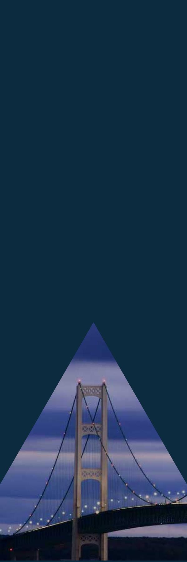 Blue sidebar panel image with bridge